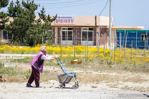 Starsza pani z charakterystycznym wózkiem