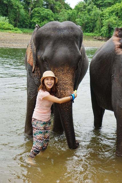 【泰國,桂河】泰國綠色旅遊7Greens在大象世界(Elephants World) 為大象服務,幫它們SPA、做營養補充品,透過親近大象更療癒了人心。