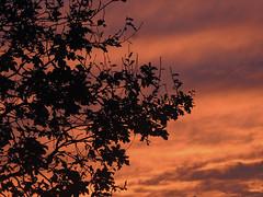 coucher de soleil (aventuriero@ymail.com) Tags: art soleil photo coucher crozon aventuriero
