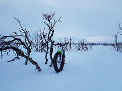 End of the trail today (GeirB,) Tags: arctic 70north varanger finnmark fatbike vadsø vadsoe vadso nordnorge norway northnorway fun uteliv liveterbestute sweethelmet swix snow training trail surly gekkobikes lou noruega bud 26x48 garmin gps carbonfork mars peace enjoy diadora shimano xt xtr