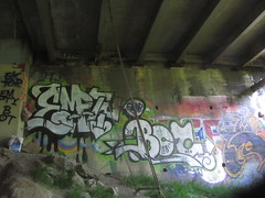 EMPTY / BOT (Lurk Daily) Tags: santa graffiti empty cruz acs anus spays
