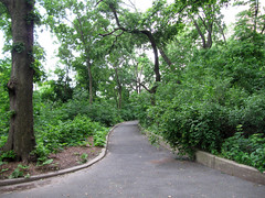 Morningside Park, 7:45 a.m., 13 June 2013 (jschumacher) Tags: nyc morningsidepark