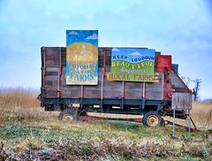 Vegetable Farms (podolux) Tags: color colors vegetables rural virginia farm va brightcolors 2008 vividcolors paintedsign loudouncounty d80 vegetablefarm nikond80 december2008 loudounco