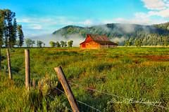 EARLY ONE FOGGY MORNING (Aspenbreeze) Tags: misty fog barn rural fence farm farmland pasture wyoming oldbarn grandtetonnationalpark mormonbarn antiquebarn aspenbreeze oldmormonbarn moonandbackphotography bevzuerlein