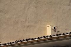 IMG_8389 (boaski) Tags: urban spain europa europe espana minimalism mallorca espagne spanien arenal majorca baleares balearen fragment playadepalma lessismore sarenal platjadepalma
