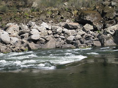 Salmon River Float Trip 2013 (Doug Goodenough) Tags: salmon river idaho washington oregon hells canyon birthday barney rafting whitewater camping drg53115salmon august summer float snake 2013 13 drg531