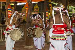 Kandyan dancers and  drummers  paying respect (Bertrand Linet) Tags: asia srilanka ceylon ශ්රීලංකාව இலங்கை bertrandlinet śrīlaṃkāva ilaṅkai