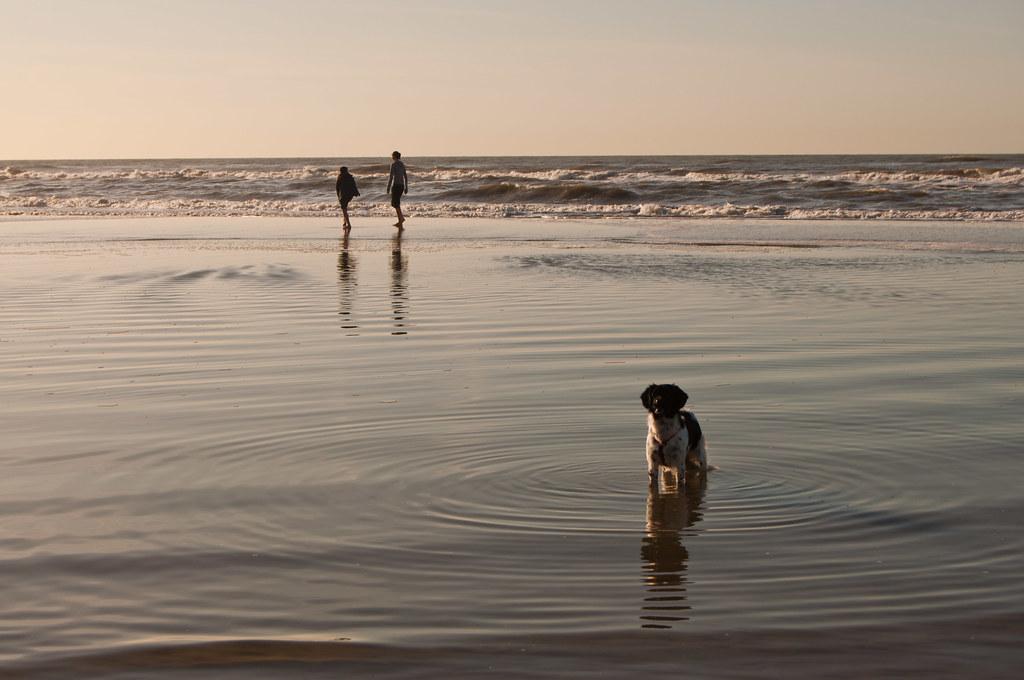 perra beach