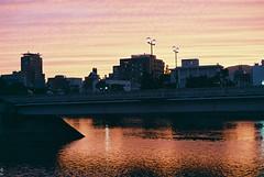 (Kkeina) Tags: city pink light sunset sky sun film japan analog 35mm 50mm olympus hiroshima manual om om1