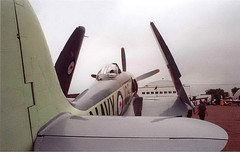 """Sea Fury (12) • <a style=""""font-size:0.8em;"""" href=""""http://www.flickr.com/photos/81723459@N04/11417931245/"""" target=""""_blank"""">View on Flickr</a>"""