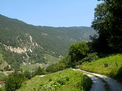 Orsieres - Martigny (12.07.13) 142 (rouilleralain) Tags: valais sembrancher valdentremont stbernardexpress bovernier viafrancigena