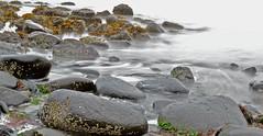 Rye Beach Ocean Waves (DrewCarter10) Tags: ocean seaweed beach water rocks gloomy newhampshire nh rye hampton hamptonbeach backround movingwater