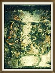 not pleased. at all (Guy Bendle) Tags: world family trees sky music love nature animals clouds power friendship god spirit earth glory islam jesus joy mother deep fraternity mohammed soul masters wisdom krishna brotherhood shivas tao ching consciousness tesla vibration frequency bhudda lobe deepjoy oneconsciousness beingsupernature