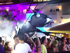 Join the Colony - Ants: Ushuaia Ibiza's Underground Rave every Sat during summer season