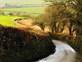 Winding lanes near Colebrook, Crediton.