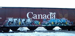 COMA and AFEX (YardJock) Tags: canada art graffiti spraypaint boxcar hopper freighttrain benching paintedsteel