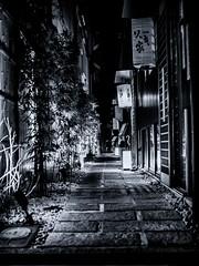 Stone pavement  -  Osaka,Japan (tai_nkm) Tags: light blackandwhite bw tree japan architecture night lumix bokeh osaka nightview gh3