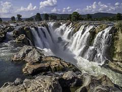 IMG_1910_11_12 (xsalto) Tags: india waterfalls cascades tamilnadu inde hogenakkal