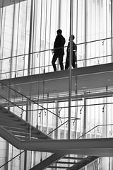 Stairway to Art (Eva O'Brien) Tags: blackandwhite chicago stairs stairway artmuseum artinstitute chicagoartinstitute modernwing evacares evaobrien