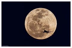 Long Flight! (ZeePack) Tags: moon india colors festival plane canon airplane aircraft fullmoon holi poornima 5dmarkiii phalgunpurnima vision:outdoor=0912
