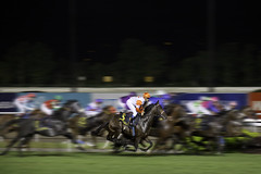 The Horse Power Race (Kenny Teo (zoompict)) Tags: horse racing zoompict kennyteo