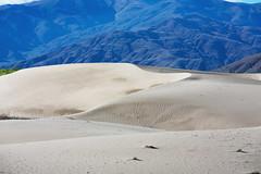 沙漠 Desert