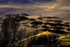 Happy Trails (Photographybyjw) Tags: happy trails evening clouds contrails combine make dramatic sunset north carolina photographybyjw rural country trees foliage