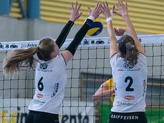 170211_VBTD1-Toggenburg_113.jpg (HESCphoto) Tags: volleyball vbtherwil volleytoggenburg damen nlb 99ersporthalle therwil saison1617