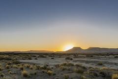 siluetas de la Patagonia (Mauro Esains) Tags: coirones pasto tierra arcilla desierto atardecer cerros patagonia sol ruta 1 cielo paisaje nikon aire libre chubut