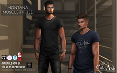 OUT NOW! MENS MONTANA MUSCLE-FIT TEE @ TMD March (coldashsl) Tags: sl menswear mens mesh clothing fashion male shop coldash cold ash tmd department project themeshproject slink physique signature gianni fittedmesh fitmesh shirt tee tshirt