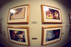 Hall of Animation. (chris.alcoran) Tags: original building art beauty canon studio toy photography disneyland under lot sigma cel down disney story animation beast process studios walt pocahontas cels 30mm imagineer rescuers imagineers