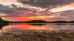 Pink sunset at Storya (spookst) Tags: longexposure pink trees sunset orange water grass norway clouds island spring purple fjord tyrifjorden storya