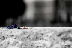 Imagine. (#odie.the.thiiird) Tags: italy white black rome roma canon photography italia fotografie photographie ponte bracelet colored pinoy santangelo fotografa banzon fotoraflk    tumblr instagram odieson  odiethethiiird