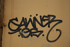 Gawner TGS (Prof. Mortus DeNali) Tags: street art bench graffiti paint tag caps piece burner bomb freight throw krylon tgs autorack rusto ironlak gawner