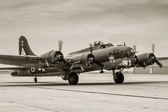 Arriving (Erik Pronske) Tags: galveston museum sepia plane vintage airplane army star flying war texas flight historic b17 lone bomber fortress tone sepiatone b17g worldwarll scholesfield