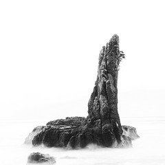 The Cathedral (Cameron Sandercock) Tags: longexposure blackandwhite seascape art canon landscape fineart australia kiama 1740mm cathedralrocks 5dmarkii cameronsandercock