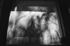 (inmost_light) Tags: blackandwhite dusty film window analog web eerie cobweb haunting analogue