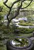 Tempio Eikando Zenrin-ji - Kyoto (liviob) Tags: kyoto asia viaggio giappone tempio giardinozen religione