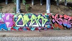 orgn (its the buges) Tags: graffiti washington siga wol wolk lfk prove orgn flickrandroidapp:filter=none