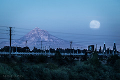 Portland Blue Moon (Alene Davis) Tags: oregon portland fullmoon moonrise mthood bluemoon
