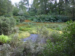 "Excursie Jac P. Thijssepark Amstelveen • <a style=""font-size:0.8em;"" href=""http://www.flickr.com/photos/99047638@N03/9782721822/"" target=""_blank"">View on Flickr</a>"