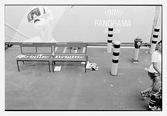 so british (look-book) Tags: bw panorama white black berlin film look fashion analog book photo blackwhite und nikon foto trix d76 fotos week analogue kb lookbook selfdeveloped f6 24x36 analogous analogicas análogo blackandwhitesw