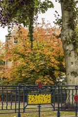 Cupar Park in Autumn (Raggiebag) Tags: park autumn scotland town fife bandstand cupar