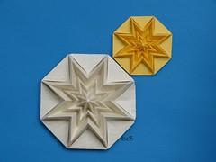 Stella Infinita - Infinity Star by Francesco Guarnieri (esli24) Tags: weihnachten noel stern papierfalten francescoguarnieri origamistern esli24 ilsez starinfinitainfinitystar