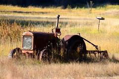 Rusty Harvester  (Explored) (misst.shs) Tags: old autumn tractor fall field nikon rust rusty idaho plow mcarthurlake hcs northidaho d7000 clichesaturday mcarthurlakeroad mccromickdeering