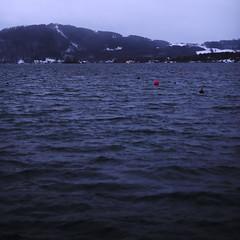 (Marion Schreiber) Tags: blue red snow 6x6 water contrast dark square 50mm austria twilight nikon eau wasser waves dusk f14 14 poles fx lowkey vignetting underexposed 1x1 blueish wellen upperaustria d700