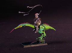 IMG_3346 (STORMBOYZ1208) Tags: fantasy warhammer hellstriders