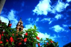 nuvole a San Domenico... (Peppis) Tags: nikon sicily palermo sicilia nationalgeographic peppis nikond7000 nikonclubit