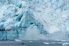 _MG_4466a (markbyzewski) Tags: alaska ugly calving margerieglacier glacierbaynationalpark
