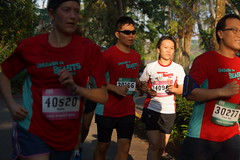 Safari Zoo Run 2014 (RunSociety.com) Tags: zoo run safari 2014 nightsafari singaporerunningevents